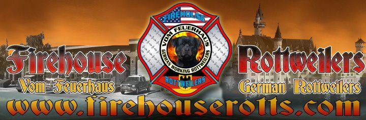 Firehouse Rottweilers